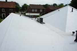 Kunststof dakbedekking gemonteerd bij Bos dierenkliniek en Rabobank in Lonneker